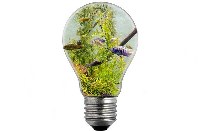 Innovationszyklen eröffnen Ausweg aus der experimentellen Sackgasse, indem Sie Ihre Mittel (Geld, Zeit) nach einem einfachen Schema aufteilen.